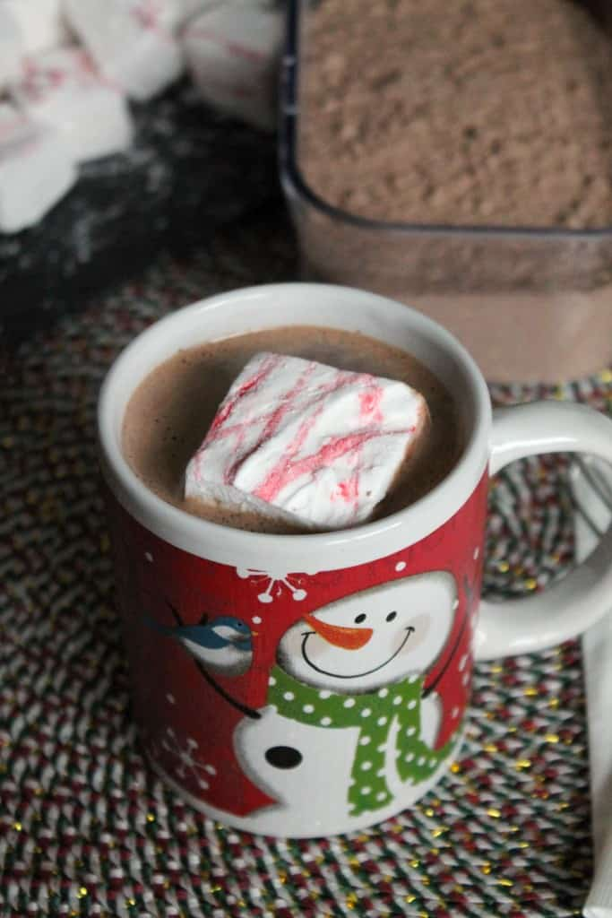 Homemade Malted Hot Chocolate Mix 3