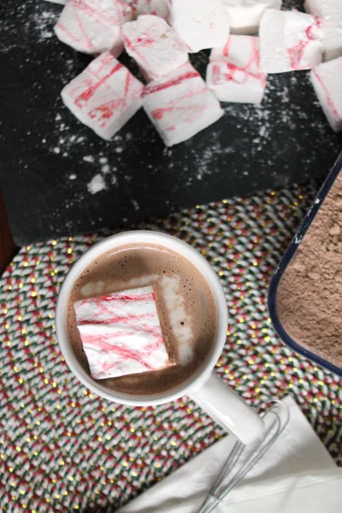 Homemade Malted Hot Chocolate Mix 4