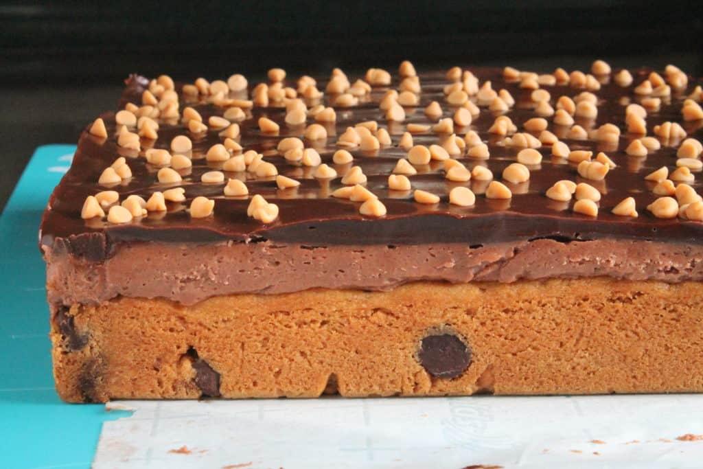 Peanut Butter Dark Chocolate Blondie Bricks 1
